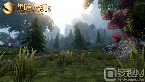图3信仰之光附近小树林.jpg