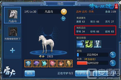图3:不同马匹不同地形适性.jpg